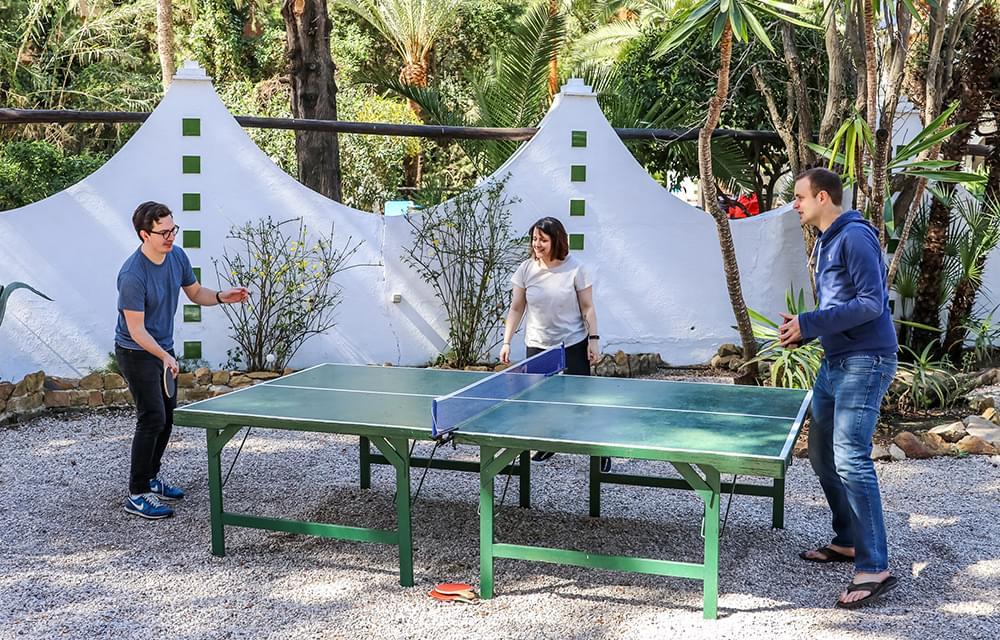 Team summit table tennis